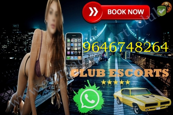 ludhiana escorts